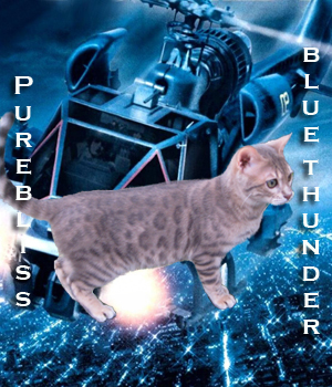 Purebliss Blue Thunder